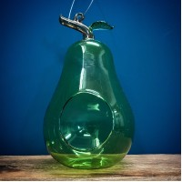 Green Pear Hanging Glass Bird Feeder by Smart Garden