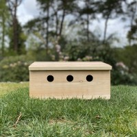 Factory Second - Sparrow Colony Terrace Wooden Nesting Box (Minor Damage)