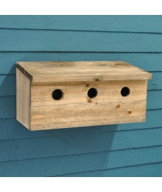 Sparrow Colony Terrace Wooden Nesting Box