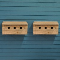 Sparrow Colony Terrace Wooden Nesting Boxes (Set of 2)