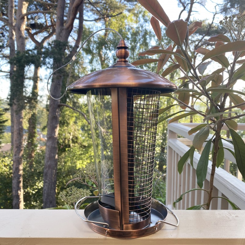 Deluxe 2 in 1 Seed and Nut Hanging Bird Feeder
