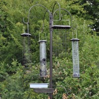 Metal Complete Bird Feeding Station with 4 Large Feeders