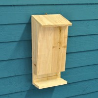 Wooden Bat Box with Landing Perch