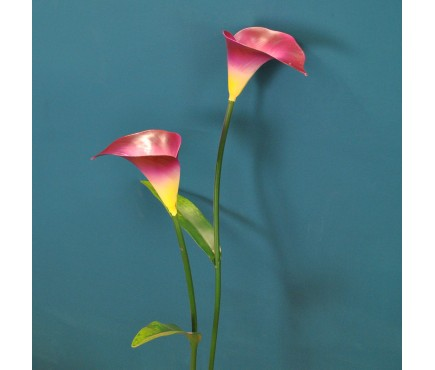 Lilac Lily Metal Garden Stake by Smart Garden
