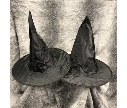 Halloween Costume Witch or Wizard Hats (Set of 2)