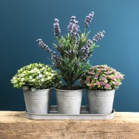 Set Of Three Zinc Plant Pots
