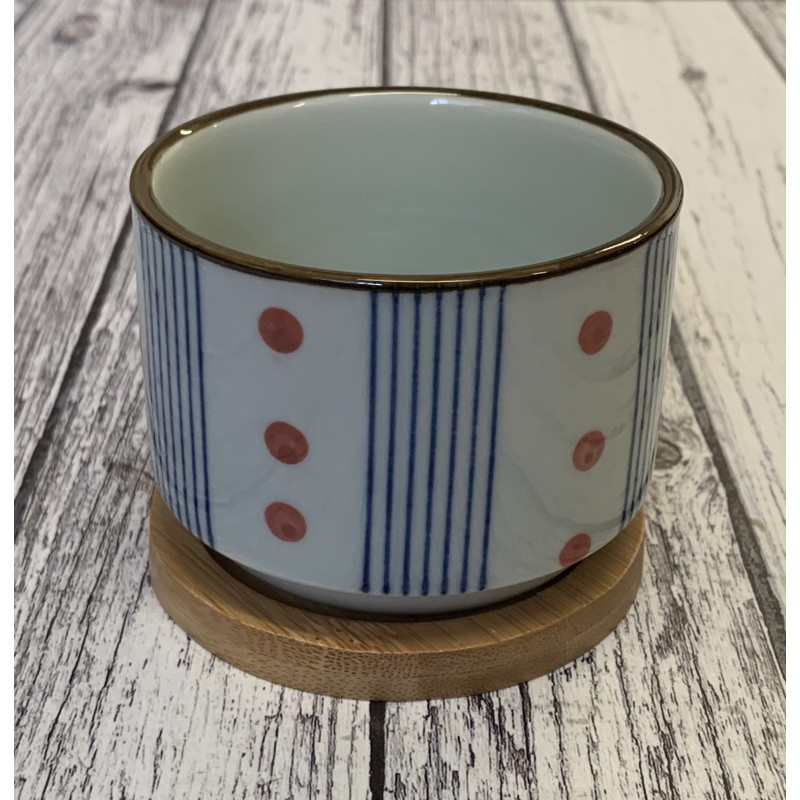 Round Succulent and Cactus Plant Pot with Blue Stripe & Red Spots Design