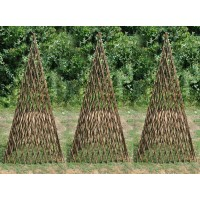 Set of Three Expanding Willow Garden Obelisks (1.5m)