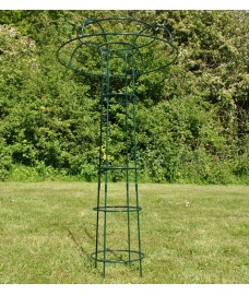 Metal Tuteur Plant Support (120cm) for Climbing Plants