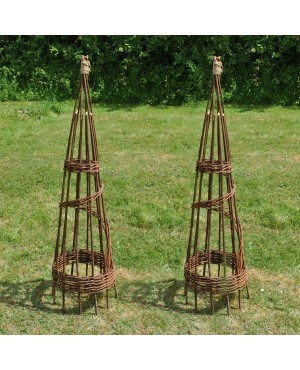 Set of 2 Spiral Wi..