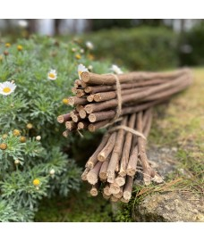 Pack of 40 Willow Pea & Bean Support Sticks (120cm)