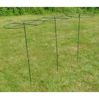 Grow Through Metal Circular Plant Supports 120cm x 60cm (Set of 3)