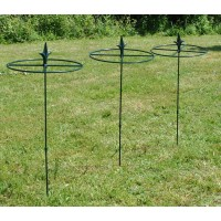 Grow Through Metal Circular Plant Supports 80cm x 30cm (Set of 3)