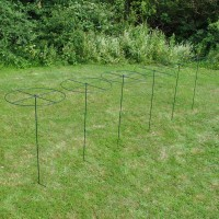 Grow Through Metal Circular Plant Supports 120cm x 60cm (Set of 6)
