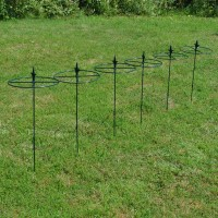 Grow Through Metal Circular Plant Supports 80cm x 30cm (Set of 6)