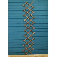 Expanding Riveted Wooden Trellis in Tan (180cm x 30cm) by Gardman