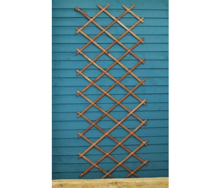 Heavy Duty Expanding Wooden Trellis (180cm x 60cm) by Smart Garden