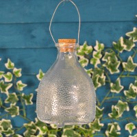 Small Hanging Glass Wasp Trap by Fallen Fruits