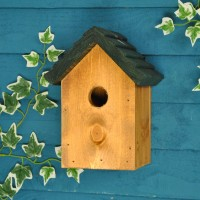 32mm Entrance Cosy Bird Nest Box - Green Roof by Tom Chambers