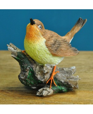Robin on a Branch ..