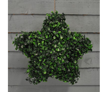 Hanging Topiary Star (30cm)