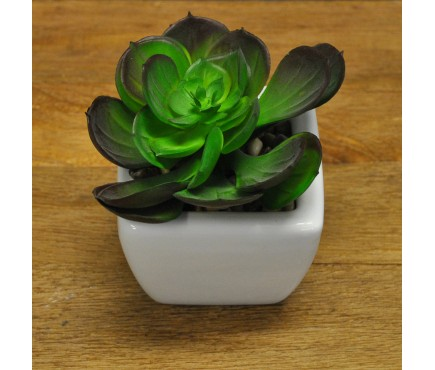 Artificial Mixed Succulent with Ceramic Pot