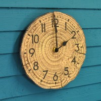 Tree Time Wall Clock by Smart Garden