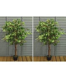 Set of 2 Artificial Topiary Ficus Fig Trees (120cm)