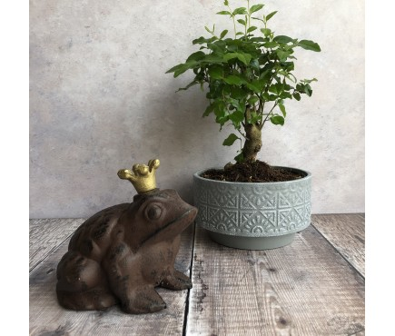 Cast Iron Frog Prince Ornament