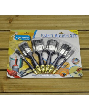 Pack of 10 Paint B..