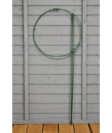 Double Plant Support Rings (90cm x 40cm) by Gardman