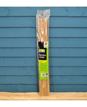 Pack of 20 Bamboo ..