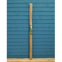 Pack of 10 Bamboo Canes (120cm) by Kingfisher