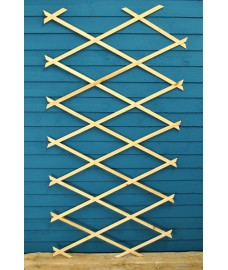 Budget Expanding Wooden Trellis (180cm x 60cm) by Kingfisher