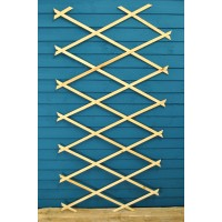 Budget Expanding Wooden Trellis (180cm x 90cm) by Kingfisher