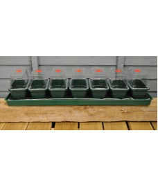 Super 7 Self Watering Seed Propagator (Unheated) by Garland