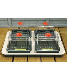 Four Top Electric Propagator by Garland