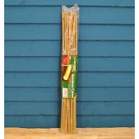 Pack of 20 Bamboo Canes (60cm) by Kingfiisher