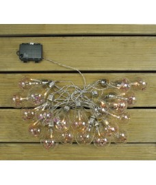 Glass Bulb And Dried Flower (Battery) String Lights by Kingfisher