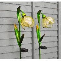 Set of 2 Snowdrop Border Lights (Solar) by Smart Solar