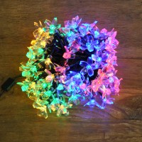 100 LED Multi Colour Cherry Blossom String Lights (Mains) by Premier