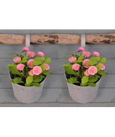 Set of 2 Round Zinc Metal Balcony Hanging Pot Planters